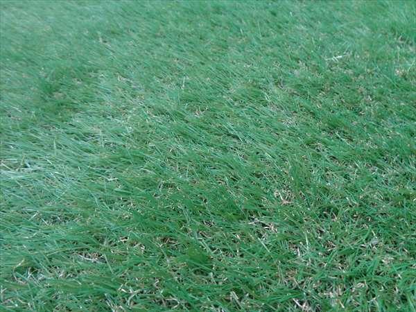 ウッドデッキに人工芝
