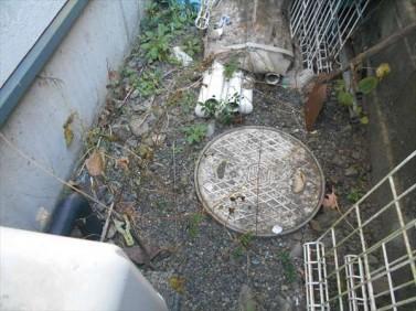 キッチン排水桝の掃除