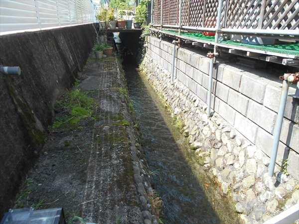 水路の掃除