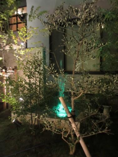 噴水 水中照明