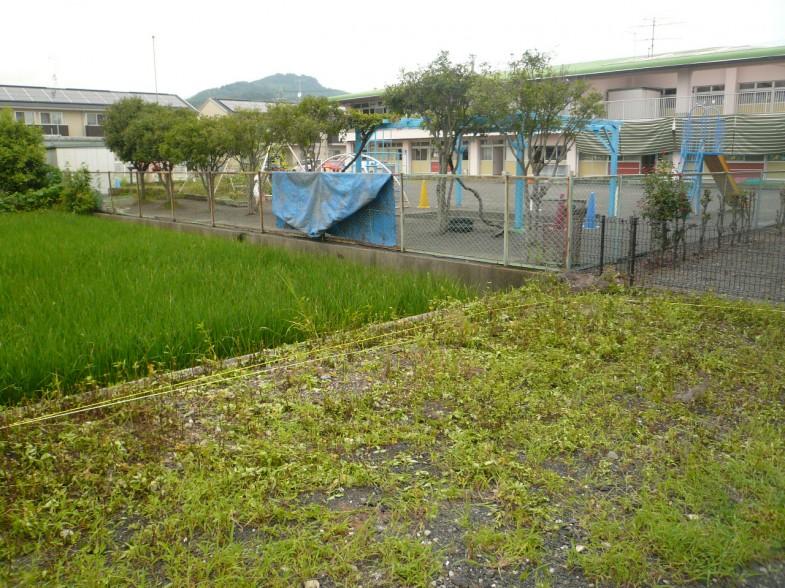 敷地内の草刈り